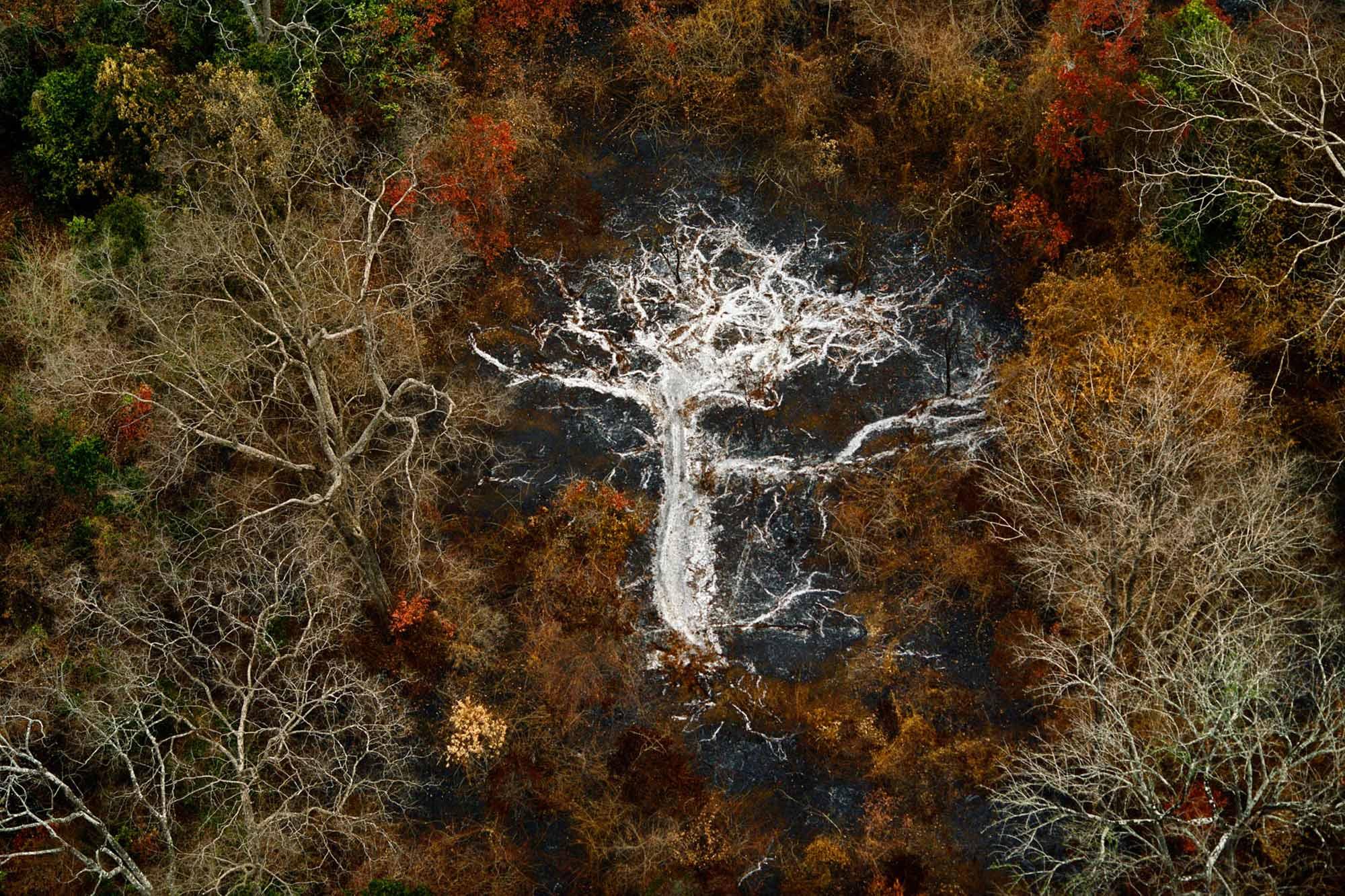 Ashes - Yann Arthus-Bertrand