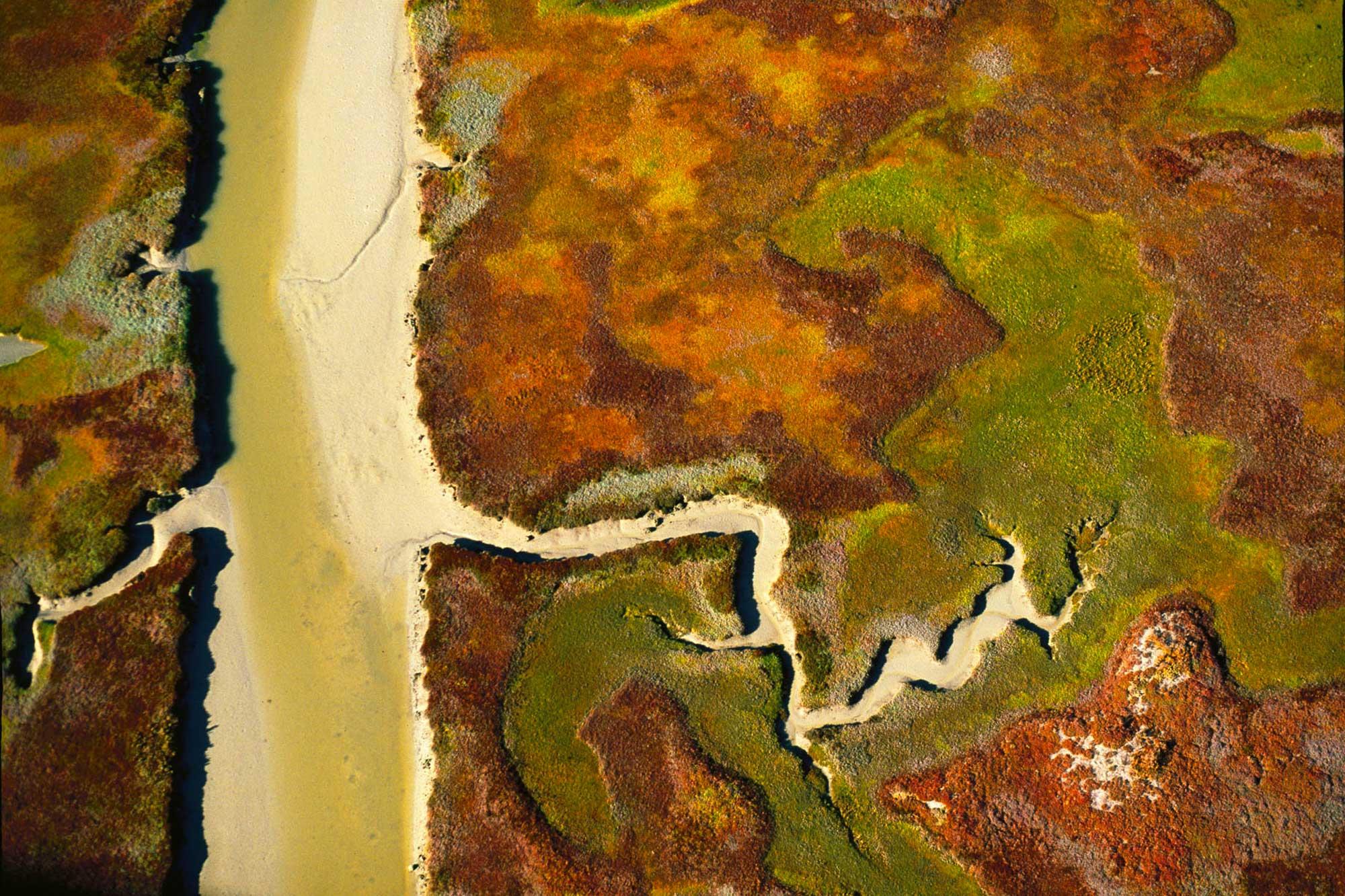 Marsh landscape - Yann Arthus-Bertrand