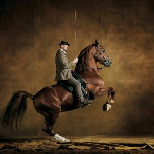 Fredriksborger, Denmark - Yann Arthus-Bertrand Photography