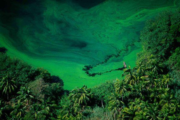 Lagoon, Honduras - Yann Arthus-Bertrand Photography