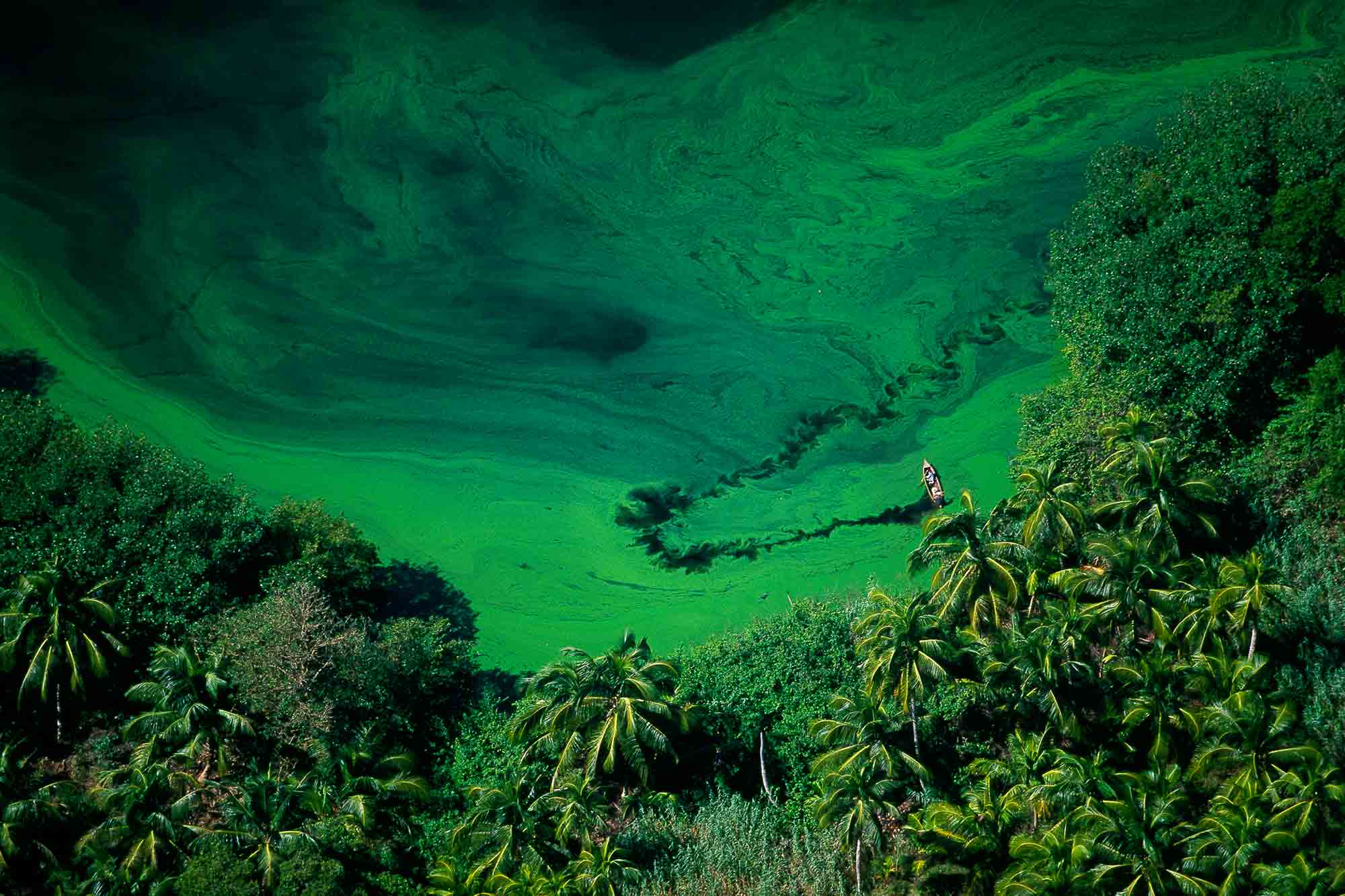 Lagoon - Yann Arthus-Bertrand