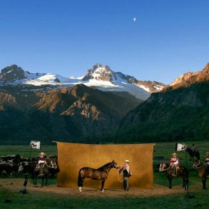 Manulo, Chile - Yann Arthus-Bertrand Photography