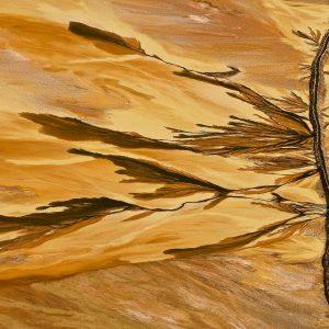 Décantation - Yann Arthus-Bertrand
