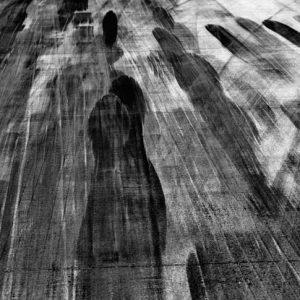 Edition limitées -Yann Arthus-Bertranda