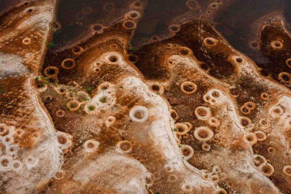 Tilapia nests, Gabon - Yann Arthus-Bertrand Photography