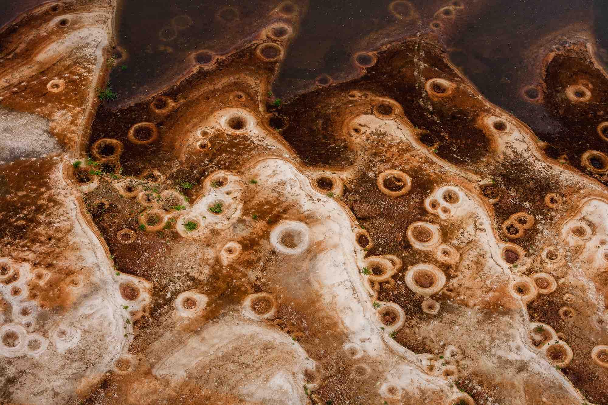 Tilapia nests - Yann Arthus-Bertrand