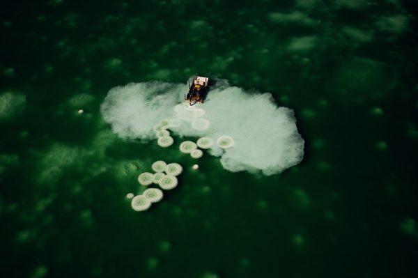 Salines, Israël - Yann Arthus-Bertrand Photographie