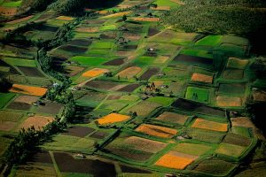 Fields, Ecuador - Yann Arthus-Bertrand Photography