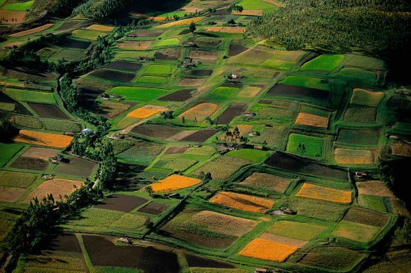 Fields, Ecuador - Yann Arthus-Bertrand Photography