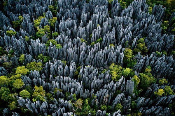 Bemaraha, Madagascar - Yann  Arthus-Bertrand Photography