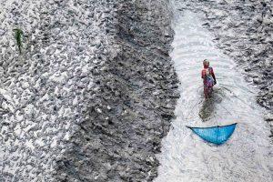 Pêcheurs, Bangladesh - Yann Arthus-Bertrand Photographie