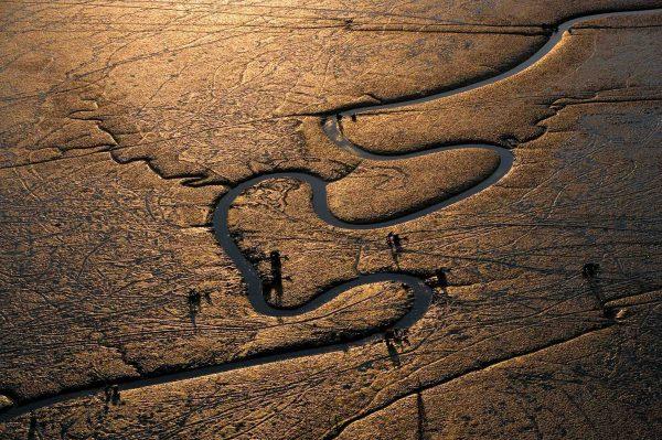 Pêcheurs, Corée du Sud - Yann Arthus-Bertrand Photographie
