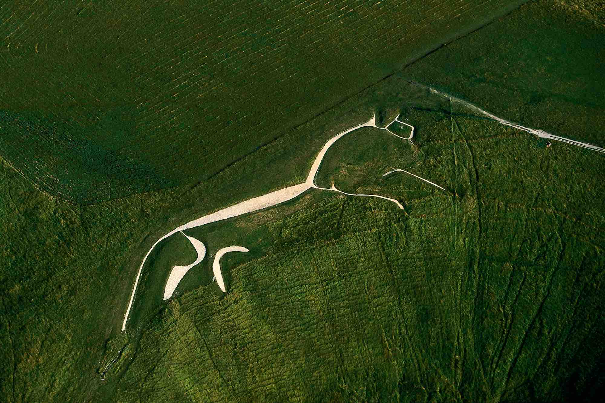 White horse - Yann Arthus-Bertrand