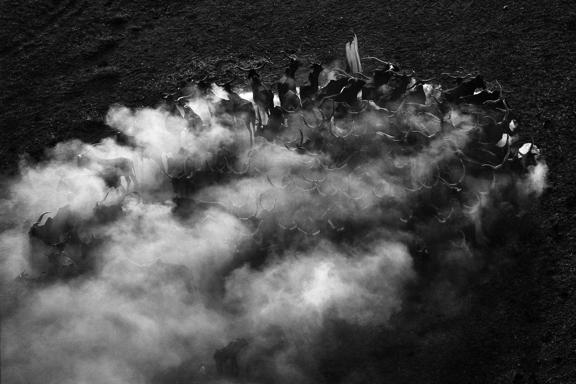 Nomade, Tchad - Yann Arthus-Bertrand Photo